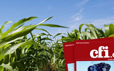 Agriterra Awarded Most Responsible Agribusiness Group of Africa 2020